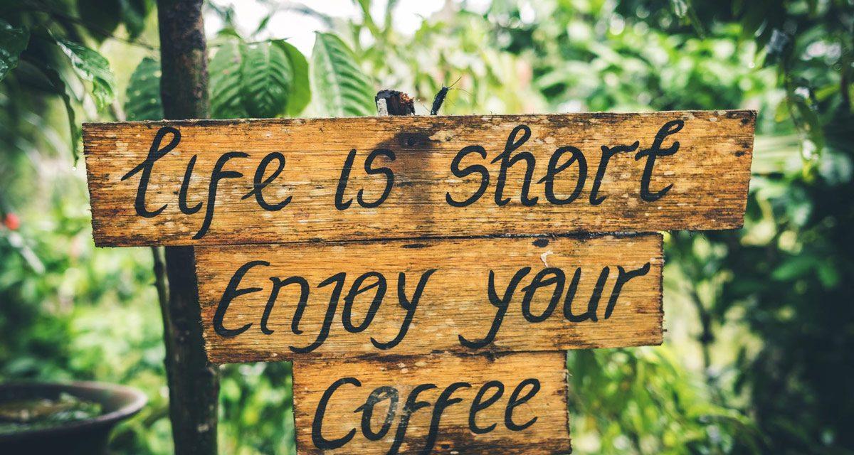 Choisir une cafetière écologique : un véritable enjeu écologique