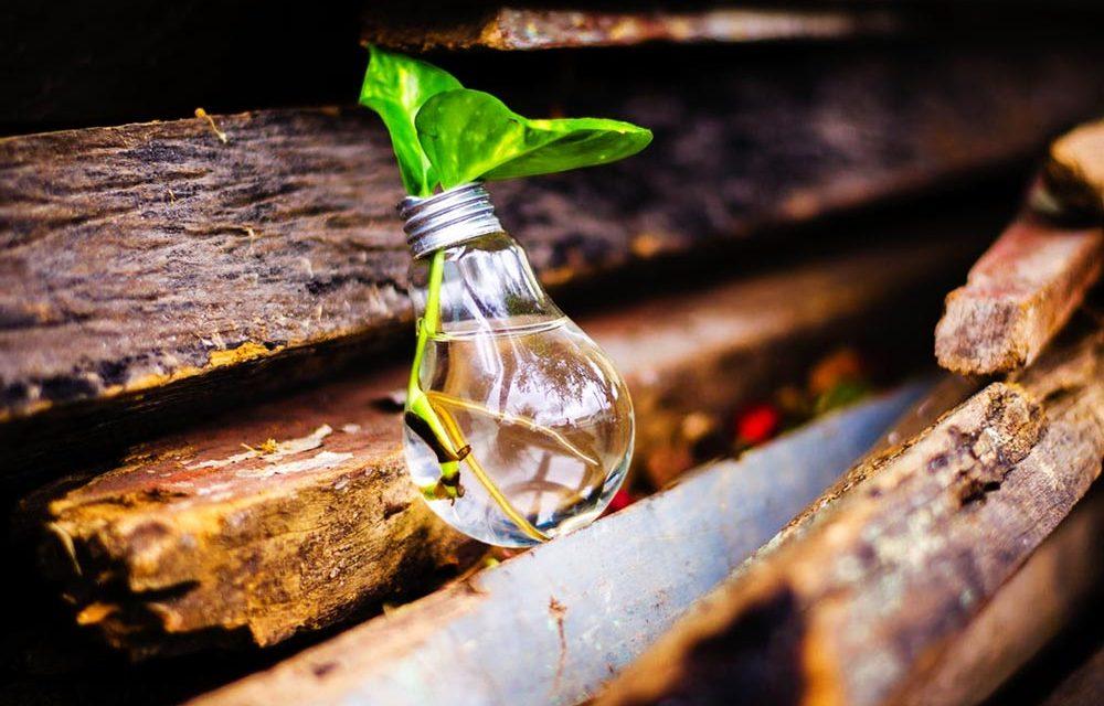 Installer des ampoules LED : pourquoi la flemme est un luxe que l'on ne peut plus se permettre ?