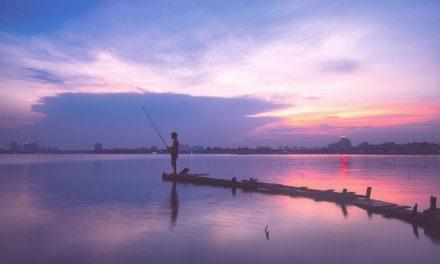 La pêche no-kill : respectons la biodiversité des cours d'eau