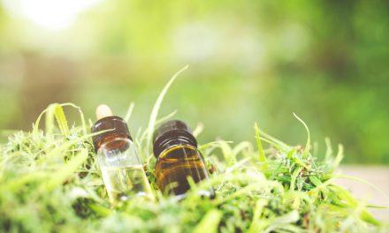 Huile de CBD, un produit «naturel» aux réels bienfaits ?