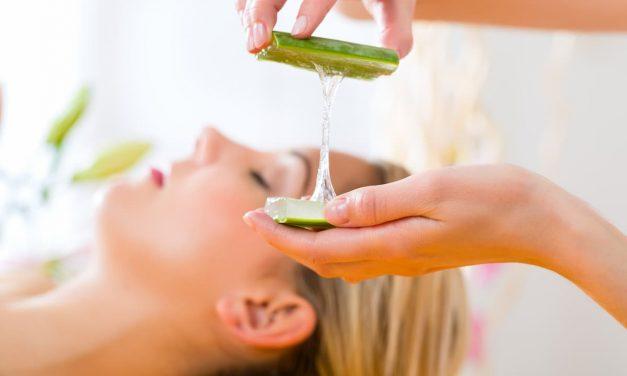 Bienfaits et utilisations de l'aloe vera en cosmétique naturelle