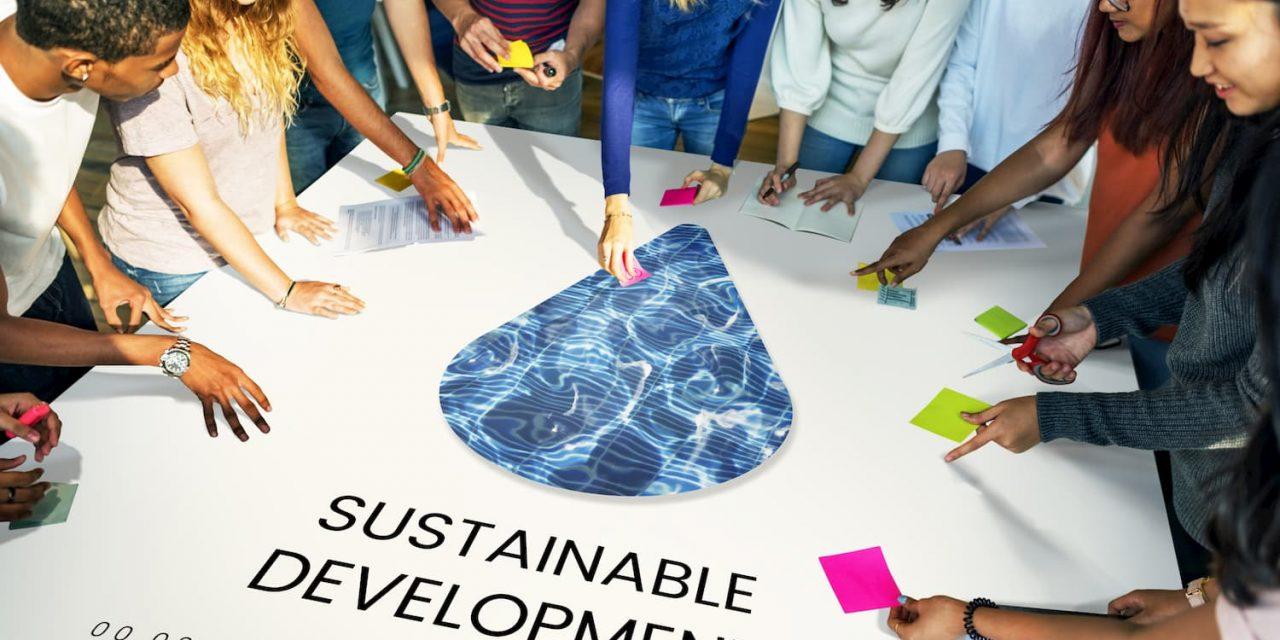 Le développement durable au cœur des entreprises et des écoles de commerce
