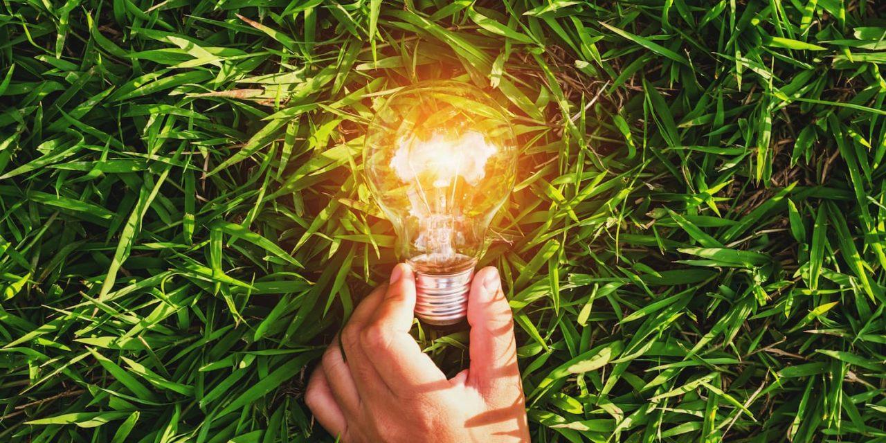 L'énergie verte : petit guide pour bien choisir